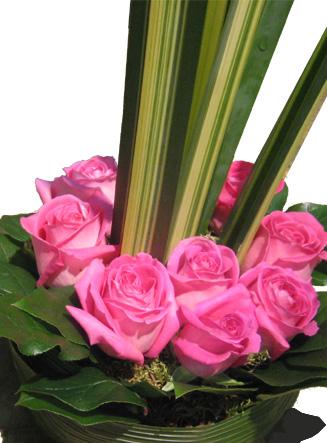 Fleurs naissance fleuriste pourquoi pas fleurs for Fleurs pour une naissance