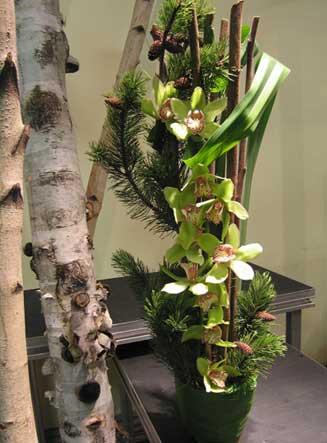 Florist Pourquoi Pas Flowers Christmas Flowers And Arrangements