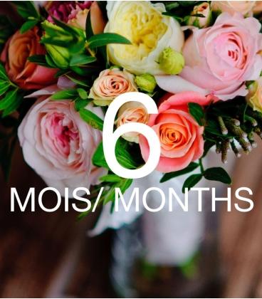 FLOWER SUBSCRIPTION 6 MONTHS