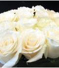 white roses square