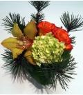 CHRISTMAS Gift N22