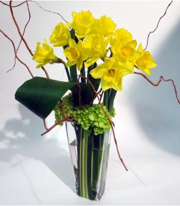 bouquet printemps livraison sur montreal. Black Bedroom Furniture Sets. Home Design Ideas