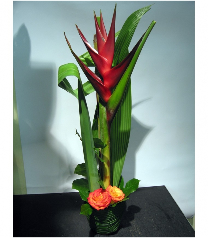 Exotic Pot With Big Heliconia Flower