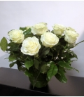 ROSES BLANCHES F9