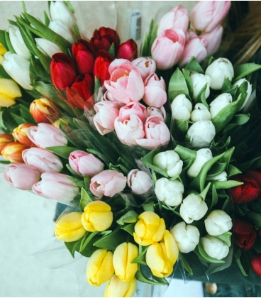 Bouquet de tulipes choix du fleuriste for Bouquet de tulipes