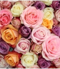 Bouquet Valentin 12 classic roses VR3