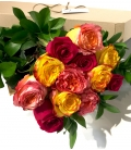 12 COLORED ROSES BR4