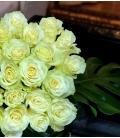 luxury white roses