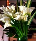 luxury Montreal flowers