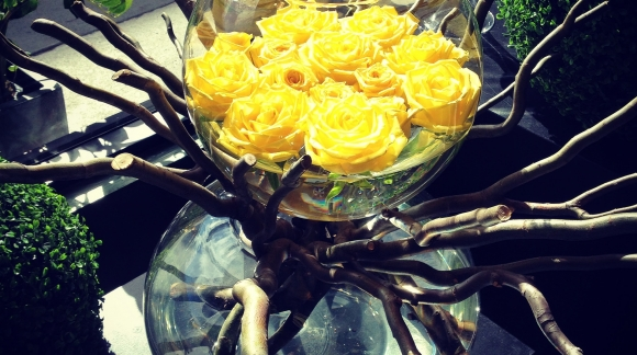 Yellow roses floating